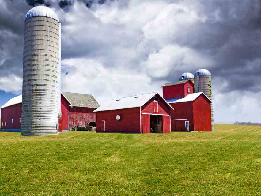 Protecting The Farm Business With Life Insurance