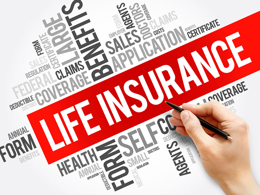 Life Insurance as an Investment Option