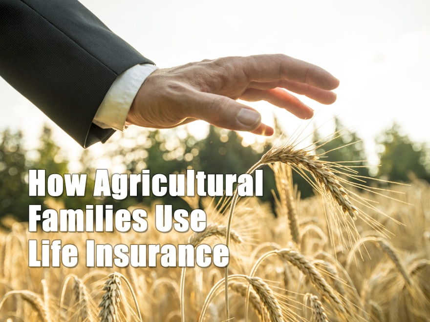 How Agricultural Families Use Life Insurance