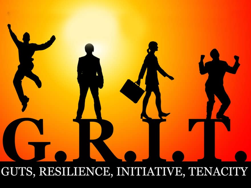 Grit, Resilience and Other Skills to Help Nurture Students.