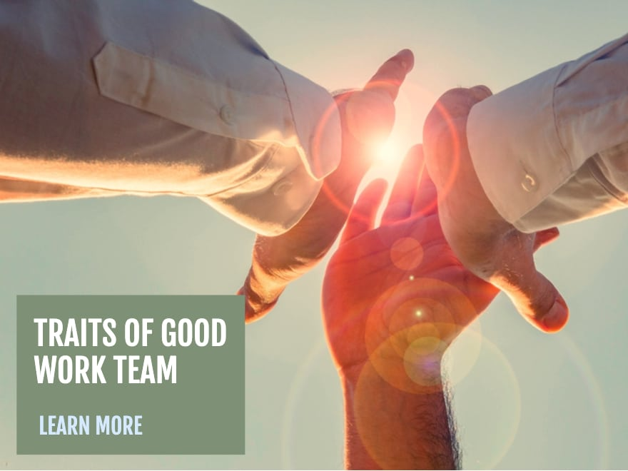 Traits of Good Work Team Members.